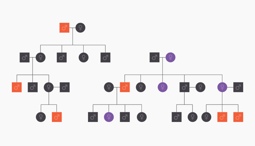 Family Tree of how addiction genes are passed