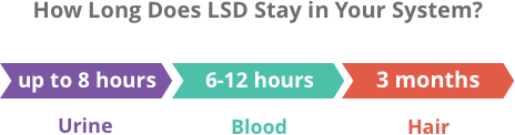 How long is LSD detectable in your system?