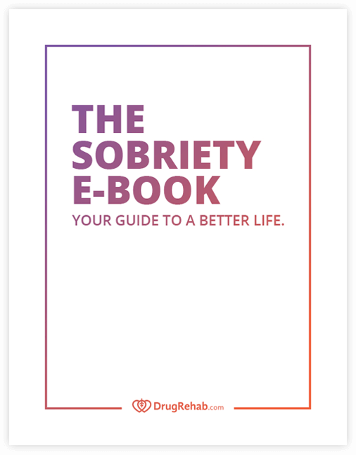 Cover of The Sobriety Ebook