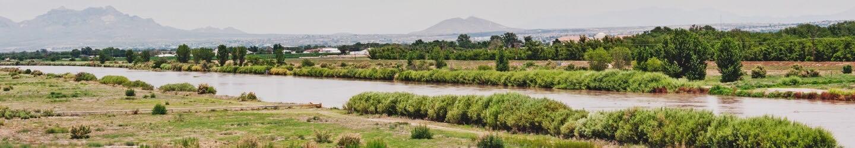 Landscape of deserty plain