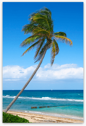 Palm Beach - Beaches, Water and Weather
