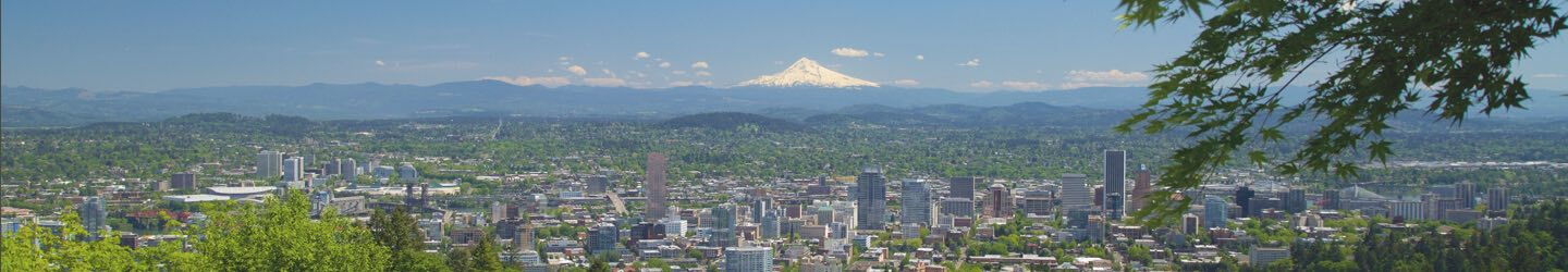 Portland city with mountain range view