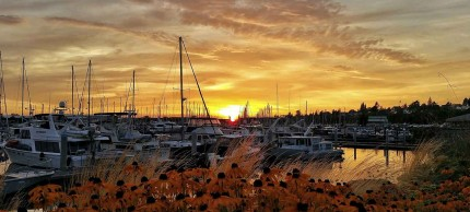 Bellingham, Washington marina at sunset