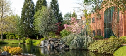 Salem, Oregon garden and pond