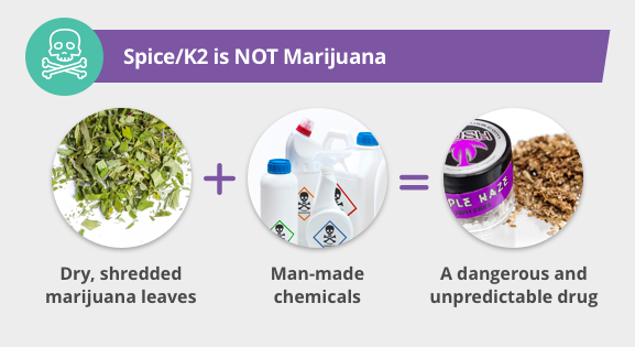 Spice K2 Is Not Marijuana Inforgraphic